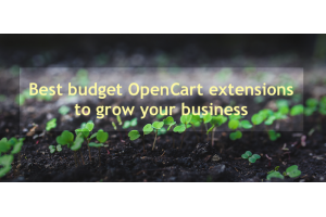 Best budget OpenCart extensions to grow your business